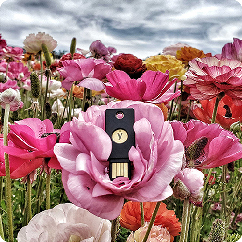 YubiKey in the middle of a pink flower in a field of flowers